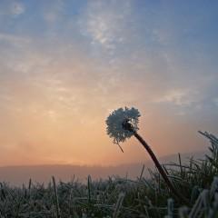 Das Gefrieren natürlicher Zustände erweckt den Eindruck, als bliebe die Zeit stehen. eLKayPics@flickr - CC-BY-NC-SA